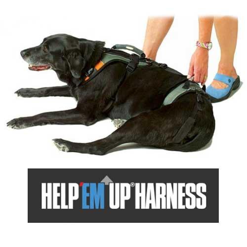 help em up harness australia